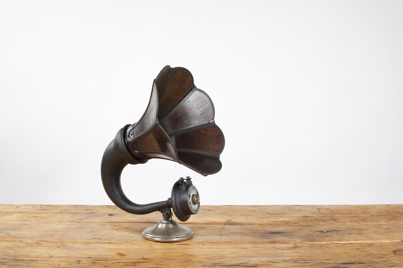 Radio horn speaker