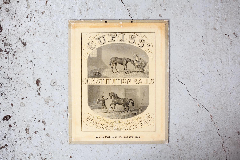 Original antique showcard for Cupiss' Constitution Balls