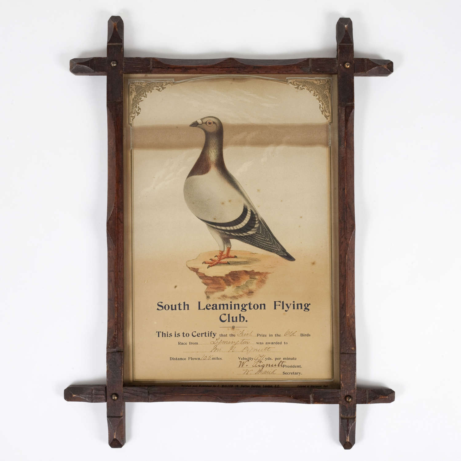 Late 19th century framed racing pigeon award
