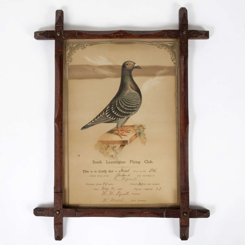 Late 19th century framed racing pigeon award