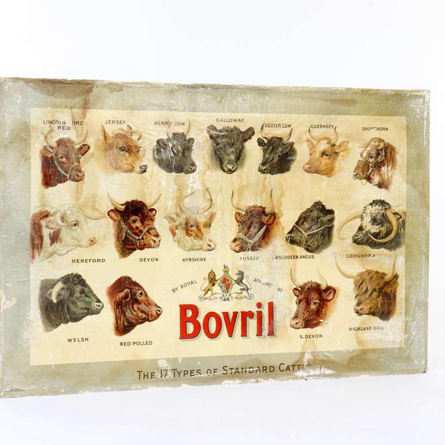 Original advertising showcard for Bovril